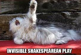 Invisible Cat Memes - invisible shakesperean play cat memes and comics