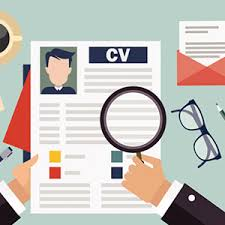 resume review services resume review dynamic transitions phd new york city