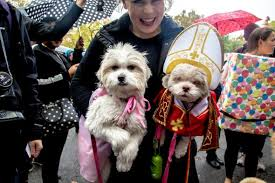 Pope Halloween Costume Tompkins Square Halloween Dog Parade Depressed Dogs