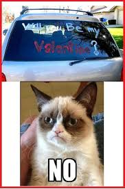 grumpy cat valentines grumpy cat will you be my grumpy cat your meme