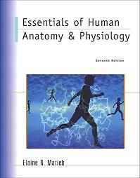 Human Physiology And Anatomy Book Marieb Essentials Of Human Anatomy U0026 Physiology Nasta Edition