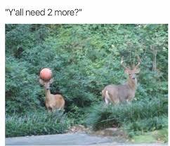 Funny Deer Memes - memebase deer all your memes in our base funny memes