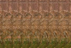 deer forest magic eye stereogram by 3dimka daz studio animals