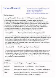 resume a format resumeedge vs resume writers customs coordinator resume resume examples of good and bad resumes template design