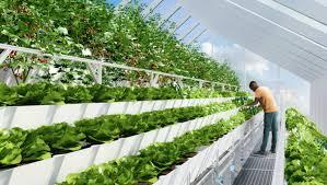 edenworks inhabitat u2013 green design innovation architecture