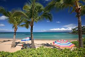 thanksgiving aruba all inclusive vacation packages resorts