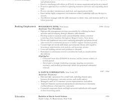 sle resume for college admissions representative training lovely design ideas objective for resume customer service skills