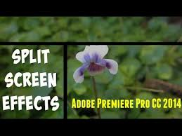 tutorial adobe premiere pro cc 2014 split 2016 red carpet vidimovie