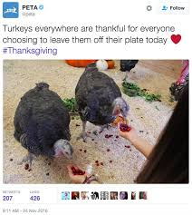 peta trolled for pro vegan tweet on thanksgiving