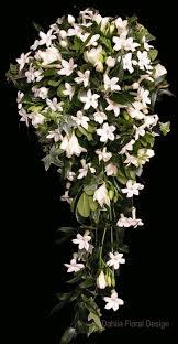 Stephanotis Flower Best 25 Stephanotis Bouquet Ideas On Pinterest Stephanotis