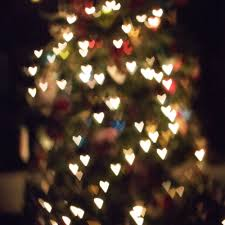christmas tree bokeh st louis photographer u2014 heidi drexler