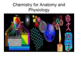 Chemistry In Anatomy And Physiology Name Date Biology Keystone Exam Preparation Organic Chemistry