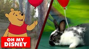 disney bunny theater disney disney video