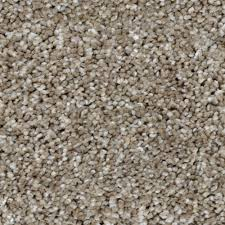 home decorators collection carpet sample trendy threads ii