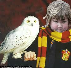 Owl Birthday Meme - girl holding an owl is turned into memes after a photoshop battle