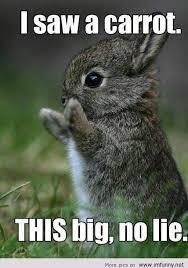 Very Funny Meme - funniest meme carrot