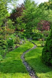 Drainage Ideas For Backyard 25 Best Pop Up Emitters Images On Pinterest Drainage Solutions