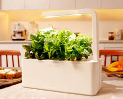 Indoor Herbal Garden Hydroponic Herb Garden Systems And Super Cool Kits