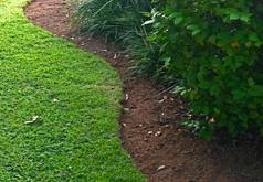 lawn flower bed edging lexington kentucky kentucky lawn care