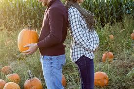 pumpkin patch maternity maternity shoot h w wondrous beauty designs