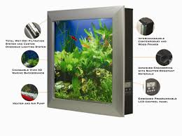 wall mounted fish tanks business pinterest