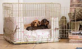 dog crate dog crate cover puppies pinterest crate puppy crates accessories lords and labradors