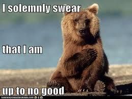Running Bear Meme - good samaritan tips from a bear religious forums