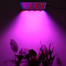 what are the best led grow lights for weed top 5 best led grow lights for hydroponics