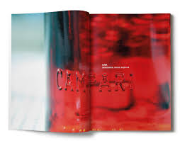 campari art brand book for campari la vita campari branding design agency