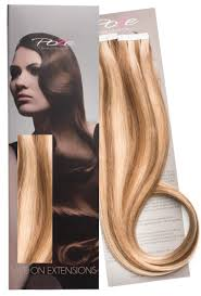 Sunkissed Brown Hair Extensions by Poze Tape On Extensions World Famous Hair