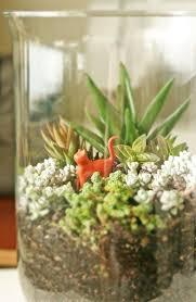 succulent terrarium how to make a terrarium gardening on cut