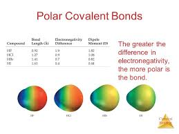 chemical bonding concepts of chemical bonding ch 8 resources tb