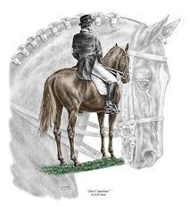 dressage horse drawings fine art america