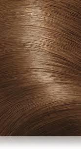 Colour Shades 6 5pbn Salon Blends Lightest Cool Almond Brown Precision Foam