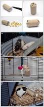 Cheap Rat Cage Best 25 Rat Toys Ideas On Pinterest Gerbil Toys Hamster Toys