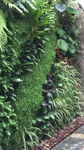 live wall social media diy living frame green benefits exterior