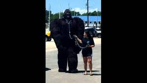 best bigfoot costume ever youtube