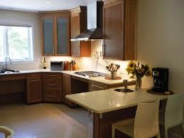ada kitchen design beautiful ada kitchen design for hall kitchen bedroom ceiling