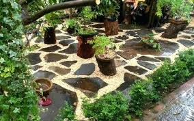Indoor Rock Garden Ideas Small Rock Garden Ideas Backyard Rock Gardens Garden Ideas Rock