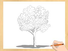 Scary Halloween Pictures To Draw 3 Ways To Draw A Tree Wikihow