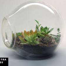 amazing blown glass terrarium containers 74 in decor inspiration