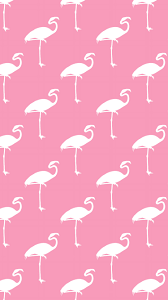 wallpaper with pink flamingos pink flamingos iphone wallpaper wallpaper pinterest pink