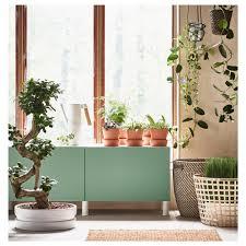 pot bonsai design ficus microcarpa ginseng potted plant with pot bonsai assorted