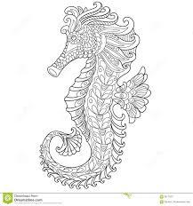 seahorse coloring page seahorse stock illustrations u2013 4 255 seahorse stock illustrations