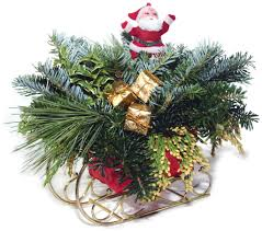 carolina fraser fir company fraser fir christmas trees wreaths