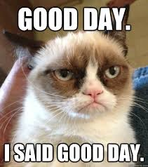 Have A Good Day Meme - good day i said good day good day grumpy cat quickmeme