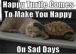 Be Happy Memes - happy turtle happypasta wiki fandom powered by wikia