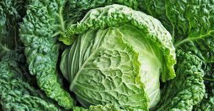 cuisiner du chou plein d idées pour cuisiner le chou association manger santé bio