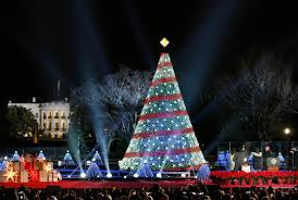 4 Christmas Tree With Lights by Separation Of Church And State U2013 All About America