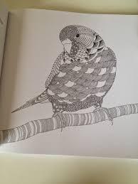 coloriage à imprimer animaux liberate